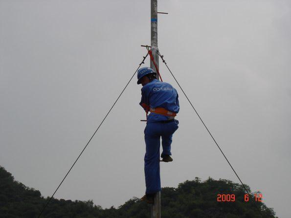 广西南宁诚兴农业科技养鸡场